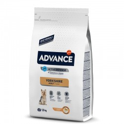 Advance Yorkshire Terrier 1,5 Kg