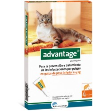 Advantage 40 Pipeta para Gatos de hasta 4 Kg