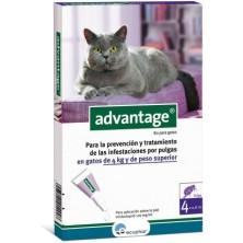 Advantage 80 Pipeta para Gatos de más de 4 Kg
