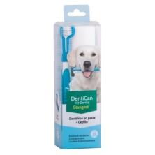 Kit Dental Cepillo + Pasta Stangest